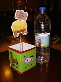 Barnyard Birthday theme Box type centerpiece