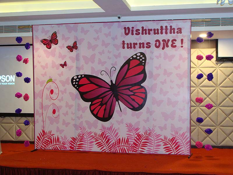 Top Pink Butterfly Birthday theme Backdrop - Untumble.com HV42