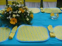 Pink & Blue  theme Placemats