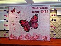 Backdrop - Pink Butterfly Birthday