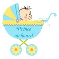 Baby Announcement theme Prince on board
