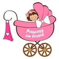 Baby Announcement theme Princess on board
