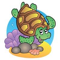 Underwater birthday theme Turtle