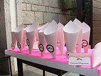 Popcorn Cones - Vintage Pony Theme Birthday Party