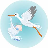 Bird and Baby Cutout - Pink & Blue