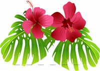 Flamingo supplies theme Tropical Flowers flamingo