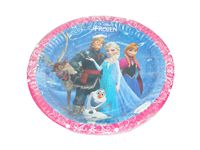 Birthday Party Plates - Frozen theme birthday party
