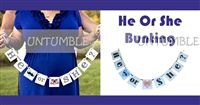 Baby Announcement theme He or She Bunting