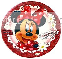 Mickey Minnie theme Minnie Birthday Party Plates