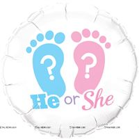 Pink & Blue  theme He or She 18inch Round Foil Balloon